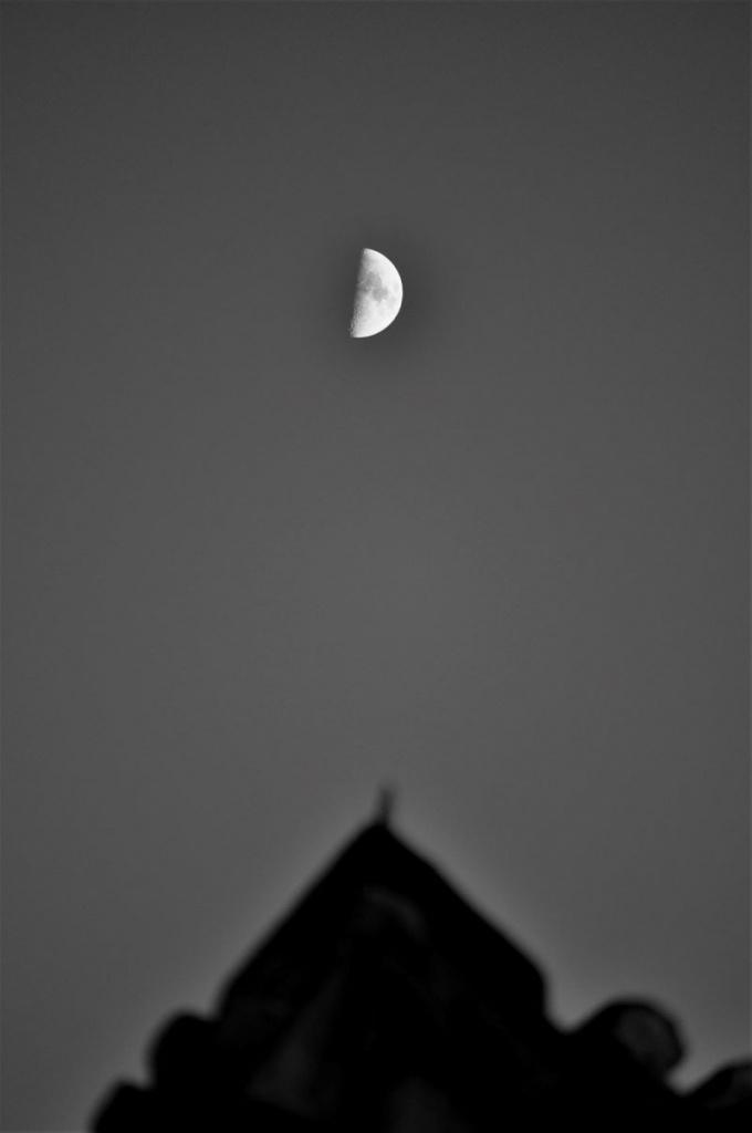 Νυχτερινή Πυξίδα
