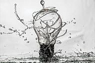 Light bulb splash